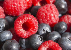 Dessert, fresh berries close-up. The texture of berries, raspberries and blue-berries, macro shot Royalty Free Stock Photo