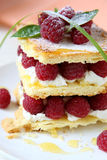 Dessert with fresh raspberries and cream. Food close up Stock Photography