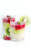 Dessert of fruit layers Stock Images