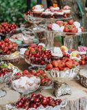 Dessert fruit table capcake outside party royalty free stock photos