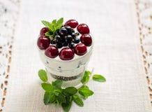 Dessert greco del yogurt Fotografie Stock Libere da Diritti