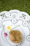 Dessert on green grass Royalty Free Stock Images