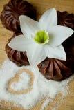 Dessert met donkere chocolade met een laag die wordt bedekt die Stock Afbeelding