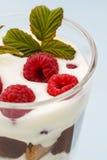 Dessert met frambozen en slagroom Stock Afbeelding