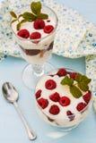 Dessert met frambozen en slagroom Royalty-vrije Stock Afbeeldingen