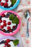 Dessert met frambozen en slagroom in kleurrijke vormen Royalty-vrije Stock Foto's