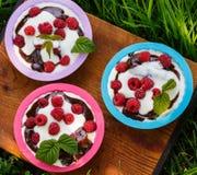 Dessert met frambozen en slagroom in kleurrijke vormen Stock Foto