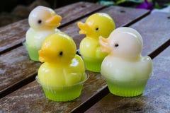 Dessert mignon de gelée de canard Photographie stock