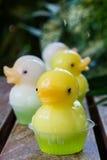 Dessert mignon de gelée de canard Image libre de droits
