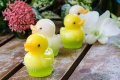 Dessert mignon de gelée de canard Photographie stock libre de droits