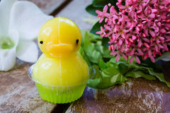 Dessert mignon de gelée de canard Images stock