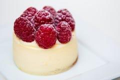 Dessert - Mini Cheesecake Stock Images