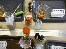 Dessert moléculaire de gastronomie, nourriture orange de perles, cuisine photo stock