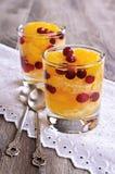 Dessert of orange slices and berries cranberries Stock Photography