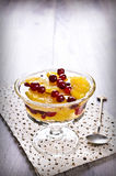 Dessert of orange slices and berries cranberries Stock Photo