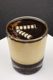 Dessert panna cotta with espresso Royalty Free Stock Images