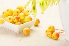 Dessert a partire dall'autunno Fotografia Stock Libera da Diritti
