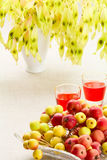Dessert a partire dall'autunno Fotografie Stock Libere da Diritti