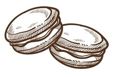 Macaroon dessert pastry food cookie isolated sketch. Dessert pastry food macaroon cookie isolated vector sketch Paris treat bakery or confectionery product vector illustration