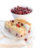 Dessert pie with cranberry Stock Photos
