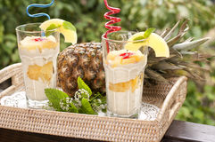 Dessert with pineapple Stock Images