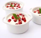 Dessert with Pomegranate. A dessert of fresh yogurt with Pomegranate Royalty Free Stock Image