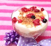 Dessert of pudding and berries Stock Photography