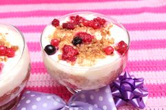 Dessert of pudding and berries Royalty Free Stock Photos