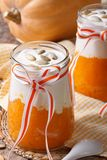Dessert from the pumpkin and yogurt close up Royalty Free Stock Images