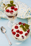 Dessert with raspberries and whipped cream.  royalty free stock images