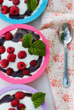 Dessert with raspberries and whipped cream in colorful forms.  royalty free stock photos