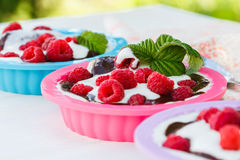 Dessert with raspberries and whipped cream in colorful forms.  royalty free stock photo