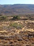 Dessert road to karoumes beach kreta island background fine art. Prints royalty free stock image