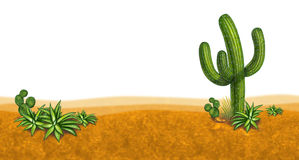 Dessert scene with cactus Stock Images