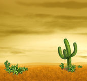 Dessert scene with cactus. And arid climate plants on a sand filled horizontal perspective Royalty Free Stock Photo