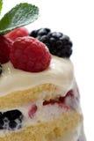 Dessert sontuoso Fotografie Stock