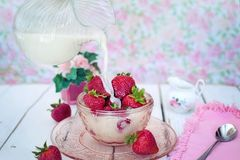 Dessert, Strawberry, Whipped Cream, Strawberries Stock Photos