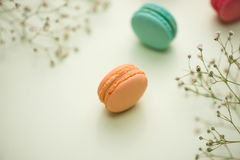 Dessert. Sweet macarons or macaroons with flowers. Dessert. Sweet macarons or macaroons with flowers stock image