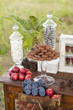 Dessert table for a wedding party. Outdoor Royalty Free Stock Images