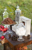 Dessert table for a wedding party. Outdoor Stock Image