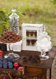 Dessert table for a wedding party. Outdoor Royalty Free Stock Image