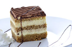 A dessert of tiramisu Stock Photos