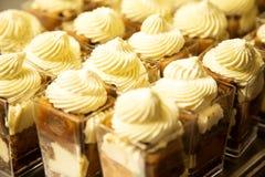 dessert tiramisu Royaltyfria Foton
