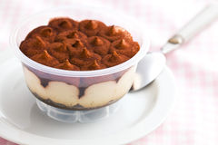 Dessert tiramisu in cup Stock Image