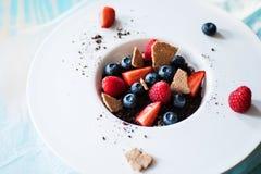 Dessert with tonka cream, chocolate and berries Royalty Free Stock Image