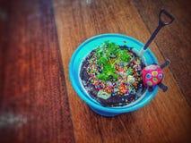 dessert in welp Stock Foto's