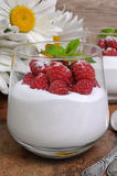 Dessert with whipped cream and raspberries Stock Images