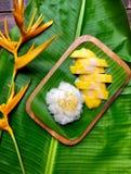 Dessert zoete kleverige rijst met mango op banaanboom Stock Foto