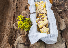Dessertkoekjes met sesamzaden op een achtergrond van de lentebloemen Stock Foto's