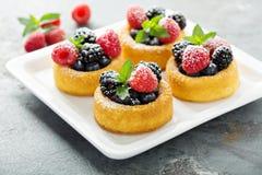 Dessertkoppen met verse bessen stock afbeeldingen